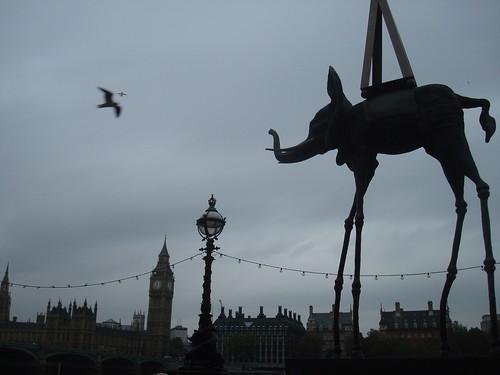 is it a bird? is it a plane? is it an elephant?