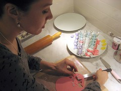 Making Gum Paste Butterflies (Deirdre Jean) Tags: vegan cupcake firstbirthday vctotw chelseaann