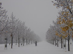 ..prima neve ..... (giorgio 12) Tags: fun neve inverno distillery vicenza blueribbonwinner primaneve inspiredbylove kartpostal abigfave platinumphoto superaplus aplusphoto campomarzo lifebeautiful flickrdiamond theunforgettablepictures theunforget