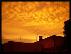 Mañana Monocromática (Mauro Montenegro) Tags: color mañana amanecer rosario rosarino naranja calor monocromatico miércoles 0645 mauromontenegro 26112008