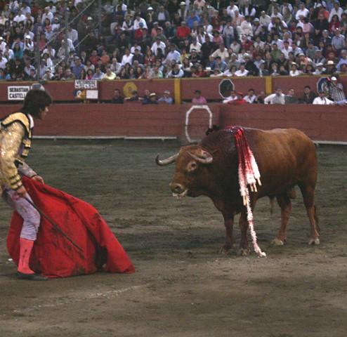 Toro indultado, Victorioso , en Lima