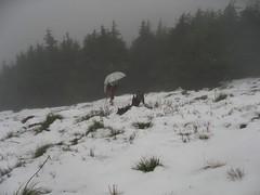 Umbrella Lady's surprise summit approach