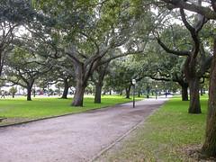 Battery Park, Charleston, SC (moonglampers) Tags: park sc southcarolina charleston batterypark thebattery whitepointgardens ektakonaelska