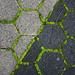 Honeycomb: December 05