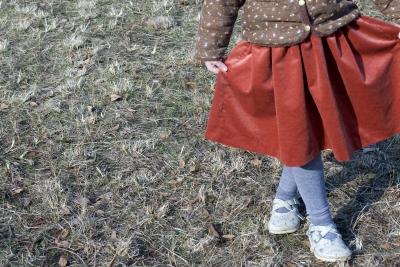 new velvet skirt