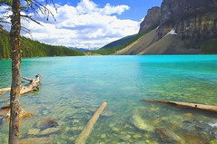 Moraine Lake (a walk on the wild side nature photography) Tags: albertacanada banffnationalpark morainelake blueribbonwinner rockflour 5photosaday naturesgallery colorphotoaward villageoflakelouise betterthangood theperfectphotographer glacierfedlake 5halloffame 5photosadayhalloffame
