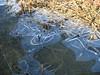 bolle d'aria che danzano sotto il ghiaccio