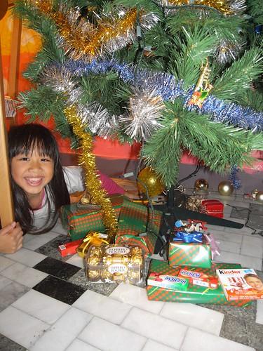 你拍攝的 娃娃與聖誕樹。