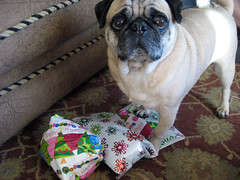 norman opening a present