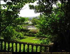 Reindeer Family @ Lingon Hill (annemich928) Tags: church philippines bicol libertybell cagsawaruins daraga legazpi albay lignon mayonvolcano japanesetunnel ligon pearadapark