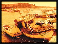 After A Day Of Work  (~ Seba ~) Tags: chile sepia boats spider uc sephia soe seba sebastin themoulinrouge firstquality artedechile abigfave artechileno platinumphoto anawesomeshot aplusphoto chile curacodevlez ysplix theunforgettablepictures thegardenofzen multimegashot thegreatshooter guasdivinas lesamisdupetitprince fotografachilena visionquality100 visionquality fotgrafoschilenos