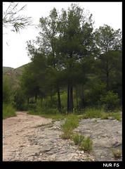 RUTA SOT DE CHERA-LAS TOSCAS (NUR FS) Tags: españa mountain valencia spain monte montaña senderismo sote sotdechera sotdecheralastoscas