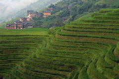 Terraces (Pawel Boguslawski) Tags: china green canon landscape asia village rice terraces wave 5photosaday 400d