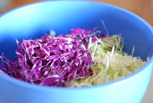 cabbage, sauerkraut