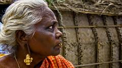 Wealth is heavy to carry - Palamedu (Henk oochappan) Tags: 2005 madurai jallikattu palamedu oochappan travel tamillifeculture peoplesofindia asia women dravidian canon eos tamil woman tamilnadu southindia india indianphotography canon1dmarkii elderly portraits indianlady tamilwoman tamilwomen indianwomen hu4d1653