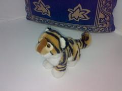 Irea's tiger cub 2