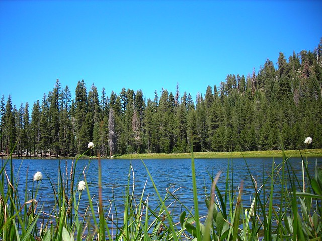 A lake in Yosemite. Photo by Ginny Shope Fowler