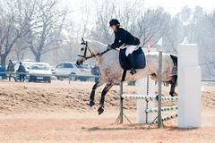 Up in the air (Axel Bhrmann) Tags: horse ride country moore jockey base halter whitehorse equine gallop horsejumping lightroom showjumping goldfrapp deryn girlrider horserding 10millionphotos womanrider womenriders tenmillionphotos inanda womenrider rideawhitehorse archee lightroompreset lightroompresets boerperd femalerider unlimitedphotos inandacountrybase axelbhrmann
