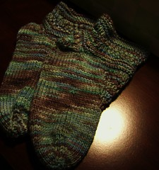 philosopher's house socks