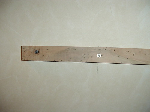bed bug headboard support