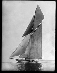 Lipton's Yacht 'Shamrock' (George Eastman House) Tags: bw boat sailing yacht 1900 sail shamrock americascup georgeeastmanhouse color:rgb_avg=9c9c9c williammvanderweyde geh:accession=197400561404