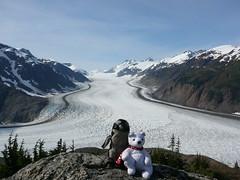 Pablito y Nanuk en Salmon Glaciar , Hyder
