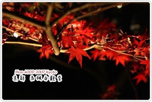 夜楓永觀堂-8
