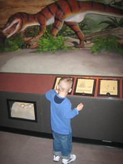 Dinosaur exhibit
