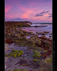 Little Swirls (Fraggle Red) Tags: ocean morning water dawn rocks raw florida limestone swirls pinkclouds beforesunrise canonefs1022mmf3545usm jupiterisland naturesfinest supershot hobesound adobelightroom martinco flickrsbest greenrocks mywinners blowingrockspreserve overtheexcellence betterthangood jupitersound 3stopgndfilter