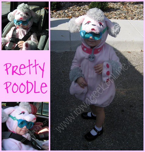 Pretty Poodle Collage