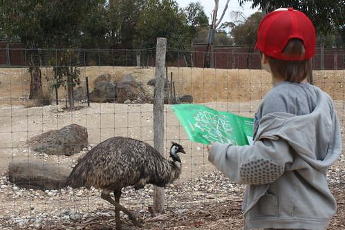 Emu + Ryder