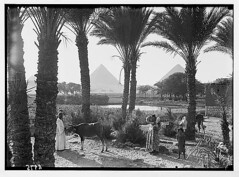egypt 1934-1939 (tummaleh) Tags: pictures old countries arab     ilamic