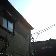 【写真】Sunlight (MiniDigi)