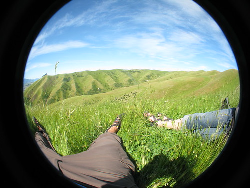 Chilling in the Wither Hills, Blenheim, New Zealand