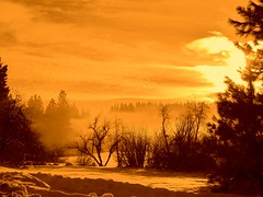mist on the lake () Tags: winter misty surreal fantasy brumeuse irrel imaginer mywinners platinumphoto