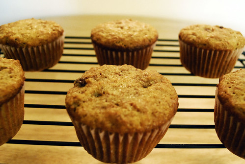 6 Week Raisin Bran Muffins