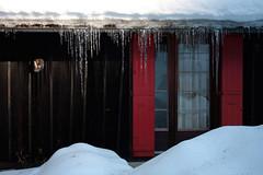 TTTTTTTTTTTT (WASABIdesign) Tags: school mountain snow ski green home montagne alpes foundation snowboard chalet wasabi ecole bois ecological valais torgon wasabidesign samanthaschmidt