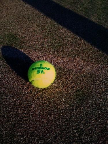 テニスボール │ スポーツ │ 無料写真素材