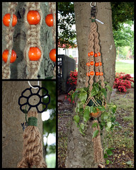 Orangeberries II (Macramaking- Natural Macrame Plant Hangers) Tags: wood orange plants mountains tree kitchen beauty hippies vintage happy idea beads spring basket natural bright handmade unique decorative character cottage creative fluffy curls northcarolina funky fluff deck gift porch shelby hanging crown flowing chic birthdaygift weavers groovy weddinggift knots sunroom swirly beachhouse detailed christmasgift hangingbasket shabby twisting artscrafts jute containergardening macram planthanger alternating mothersdaygifts macramakin macramaking 5plyjute chinesecrownknot