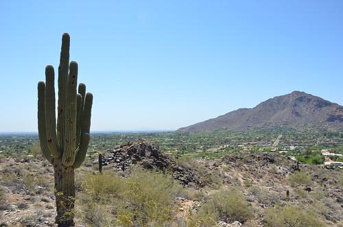 Arizona 2011 204