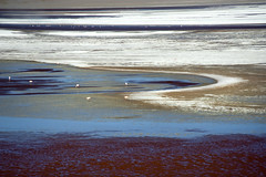 Laguna Colorada - Red Lagoon - Bolivia (tigrić) Tags: travel southamerica landscape flamingos bolivia andes altiplano borax lagunacolorada redlagoon southwesttour eduardoavaroaandeanfaunanationalreserve