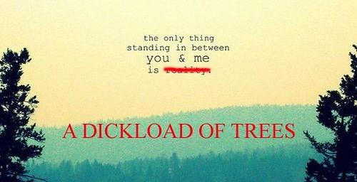 trolling_tumblr_18