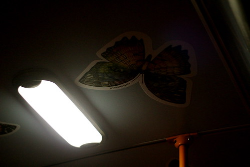 Tuesday: creepy butterflies on the bus