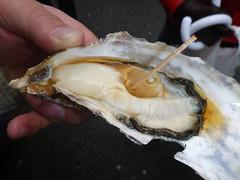 P1020248 Tsukiji - huge oyster with ponzu (drayy) Tags: food fish japan sushi tokyo yummy market tsukiji seafood   uni oyster bluefin eel tuna fishmarket ikura  seaurchin anago      mentaiko