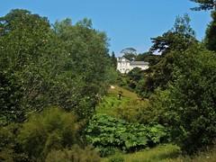 Little House on the Hill (RoystonVasey) Tags: summer house tree garden cornwall fuji nt 2006 national finepix maze kernow glendurgan turst f440 glendurgangarden