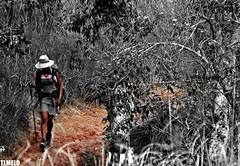 She comes  - Monte Roraima Trekking (TLMELO) Tags: woman trekking hiking walk venezuela mulher hike climbing backpacking backpack tiago gran monte canaima soe thiago justdoit ican trilha roraima melo andar sabana tepui idid impossibleisnothing keepwalking thiagomelo theperfectphotographer tlmelo dotheimpossible