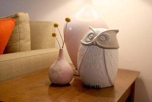 The Owl…