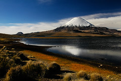 Volcn Parinacota (Leonid Plotkin) Tags: chile mountain lake southamerica nature landscape volcano volcan parinacota lauca chungara 5photosaday laucanationalpark landscapesdreams