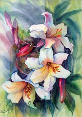 White Lilies (R.khosh) Tags: flowers white flower green art nature watercolor painting colorful purple searchthebest iran  lili amazingcolors