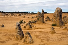 The Pinnacles, Australia (C) 2008